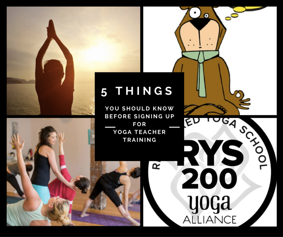 5 things you need to know before you enrol for yoga teacher training.
