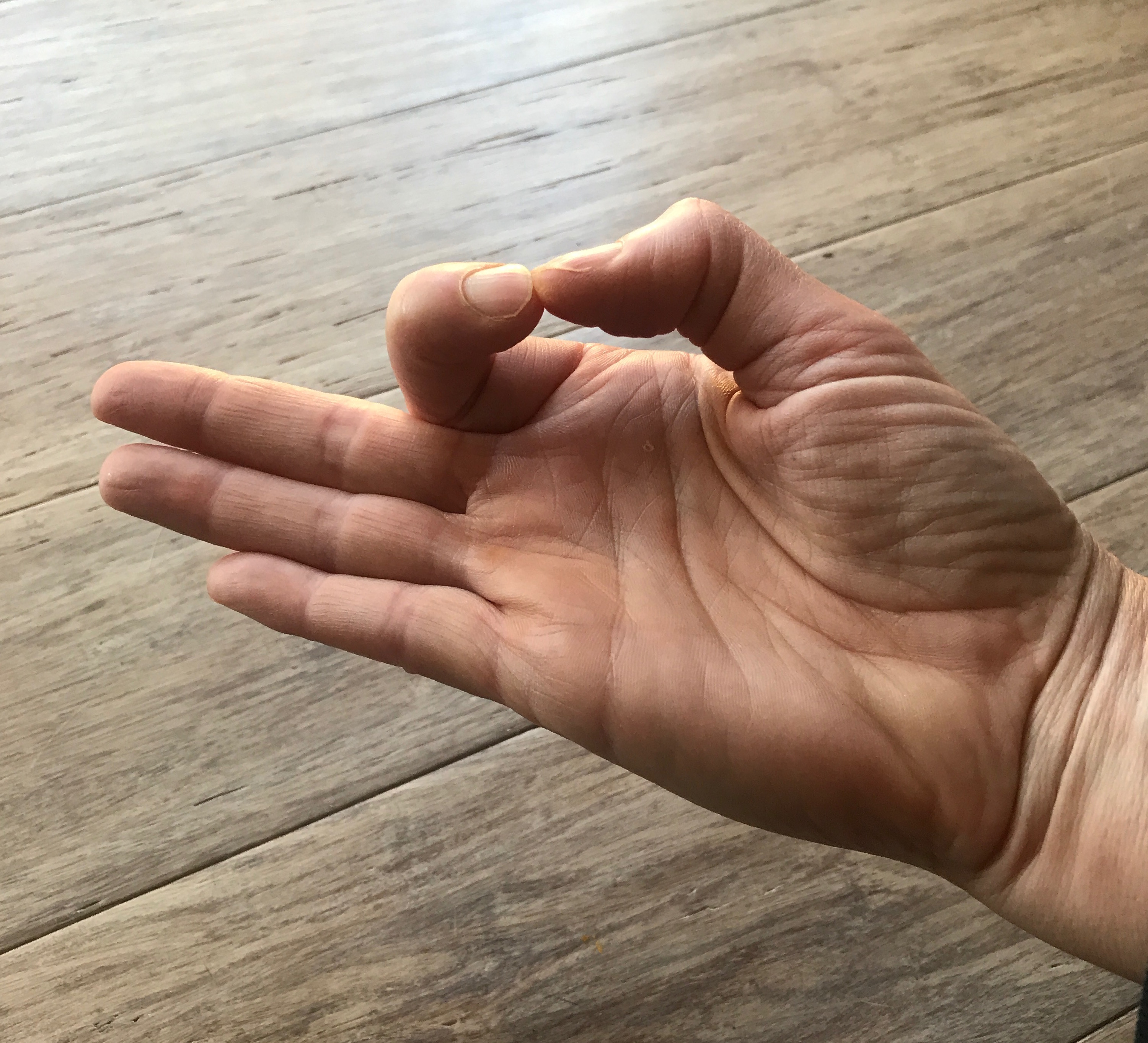 Mudra - Hand Yoga for Healing